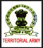 territorial army logo